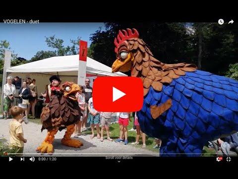 animatie vogels