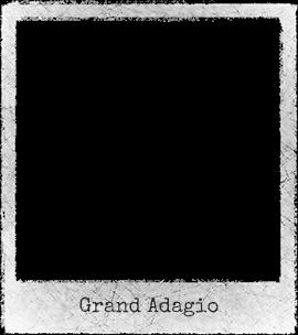 Steltenloper-Grand-a