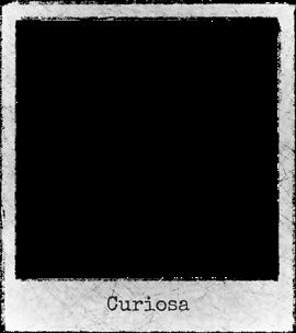 Straattheater-Curiosa